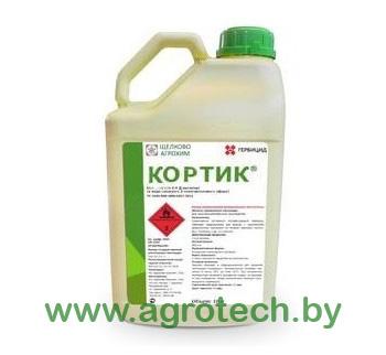 kortik_logo