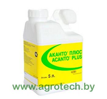 Acanto Plus logo