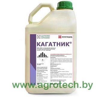 kagatnik_logo