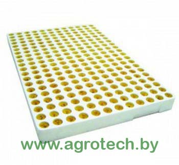 plugs-tray-240
