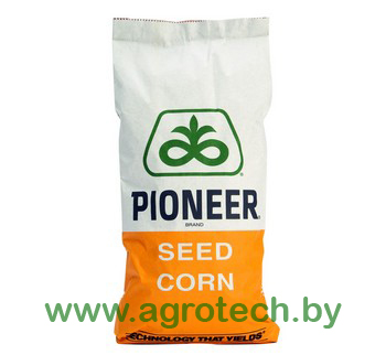 Zastavka kukuruza meshok logo