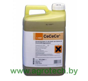 CeCeCe750_logo