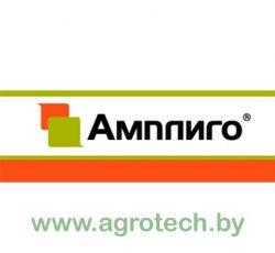 ampligo